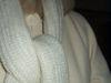 Whitecoat