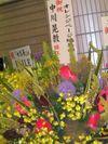 Flowers_orange