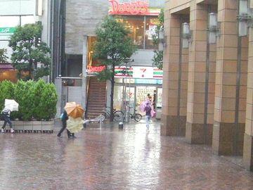 Typhoon01
