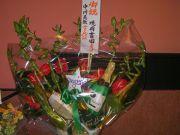 Flower_brava01_2
