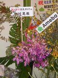 Flower4sunmall02