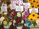 Flower10