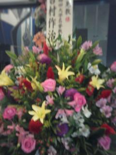 Hakuju20121228c