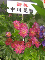 Flower4ginga_nakagawa