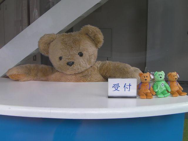 Okubo_teddy