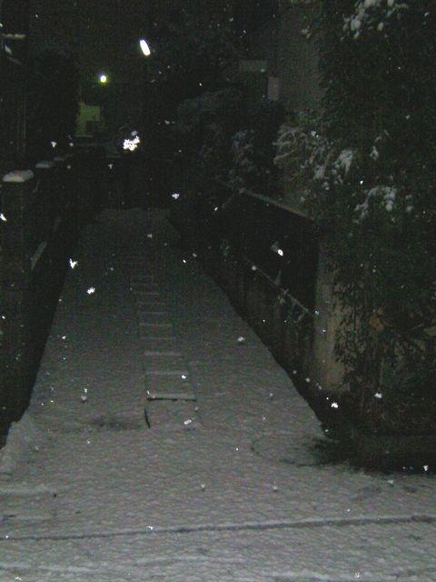 Snow120123a