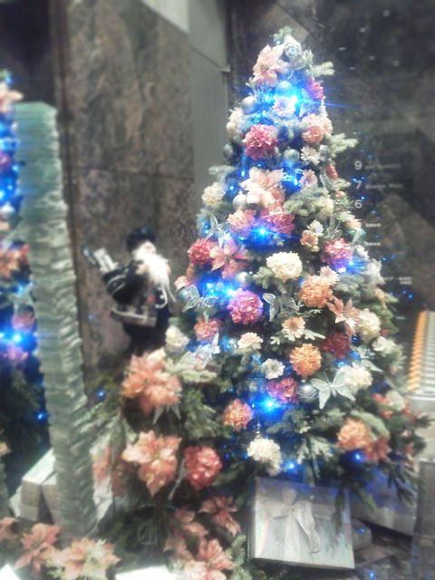 Hakuju20121228a