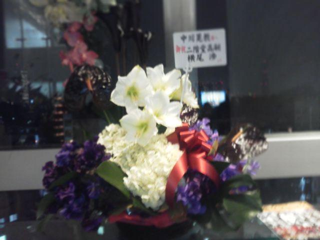 Hakuju20121228e