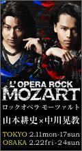 Mozart_banner120_220